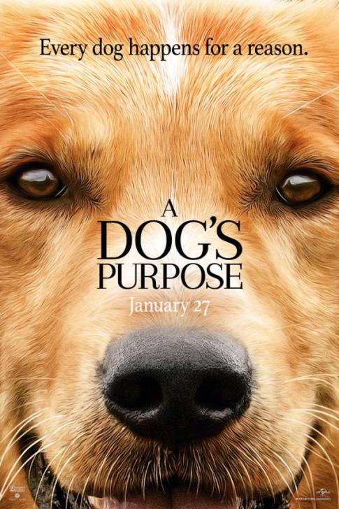 A Dog's Purpose - หมา เป้าหมาย และเด็กชายของผม